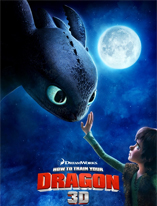 How To Train Your Dragon 3D Movie Poster Cameron Hood